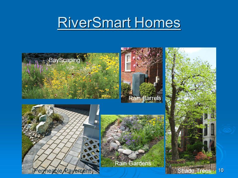 10 RiverSmart Homes Rain Gardens Permeable Pavement BayScaping Rain Barrels Shade Trees
