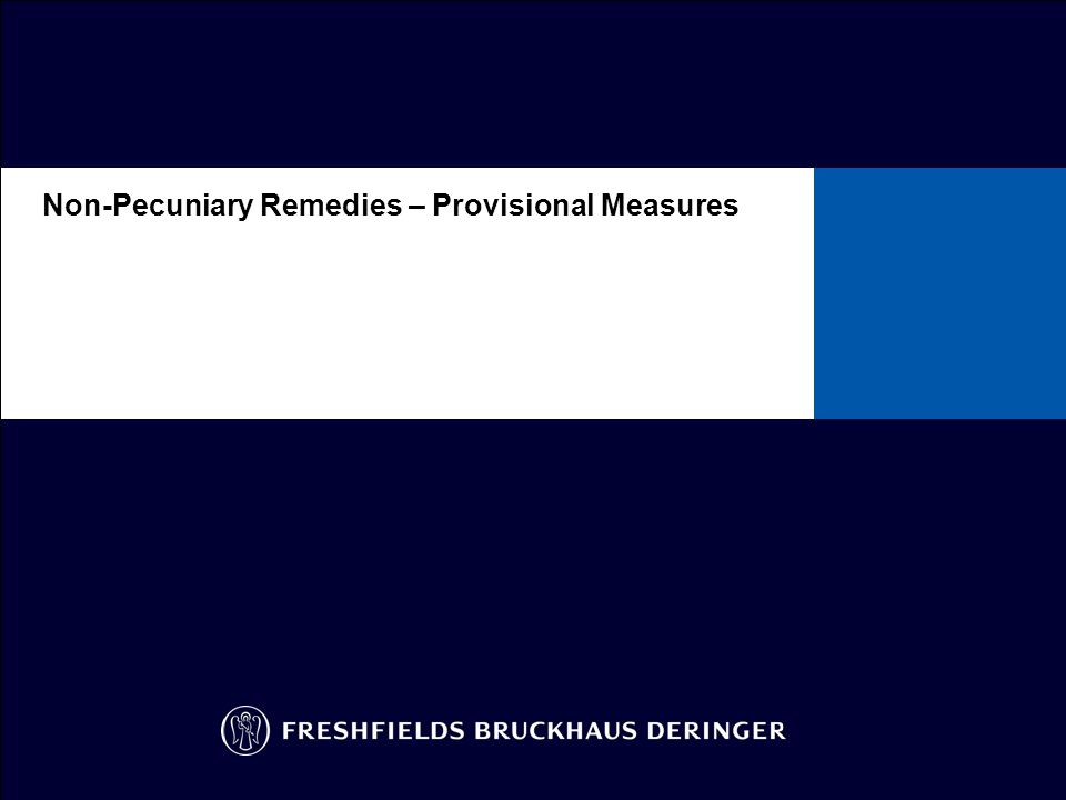 Non-Pecuniary Remedies – Provisional Measures