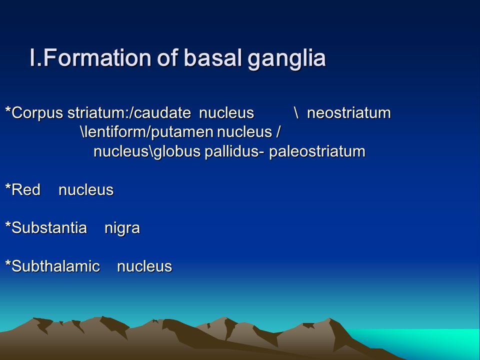 Ⅰ.Formation of basal ganglia *Corpus striatum:/caudate nucleus \ neostriatum \lentiform/putamen nucleus / \lentiform/putamen nucleus / nucleus\globus pallidus- paleostriatum nucleus\globus pallidus- paleostriatum *Red nucleus *Substantia nigra *Subthalamic nucleus