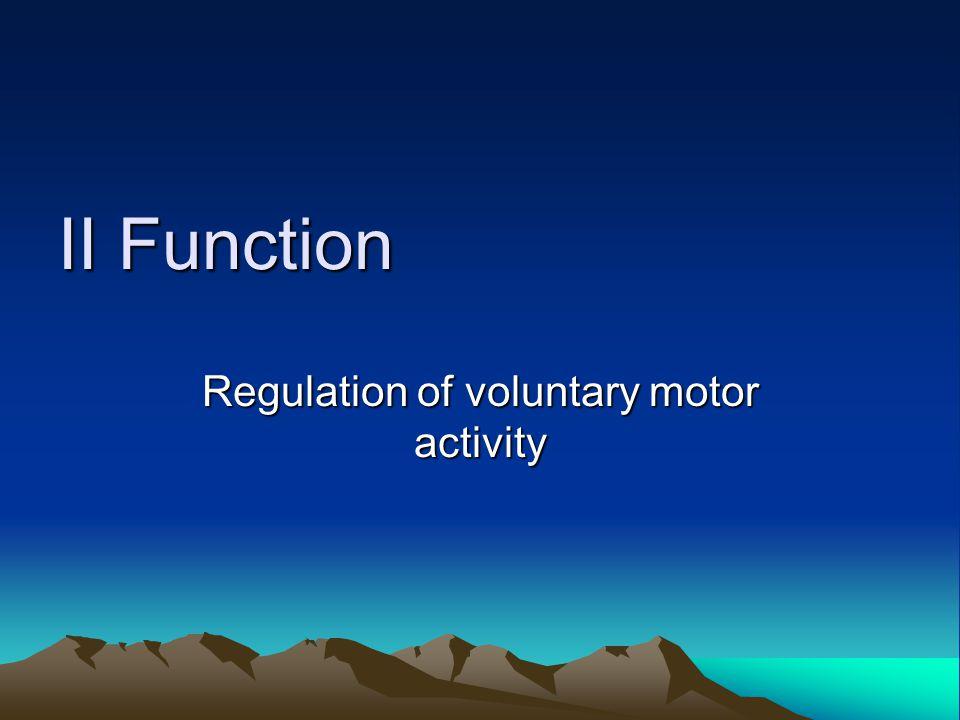 Ⅱ Function Regulation of voluntary motor activity