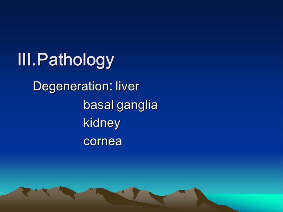 Ⅲ.Pathology Degeneration : liver Degeneration : liver basal ganglia basal ganglia kidney kidney cornea cornea