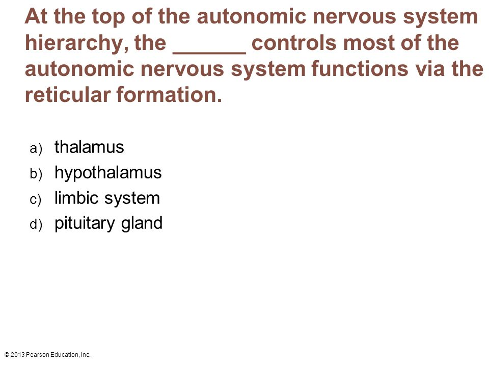 © 2013 Pearson Education, Inc. At the top of the autonomic nervous system hierarchy, the ______ controls most of the autonomic nervous system function