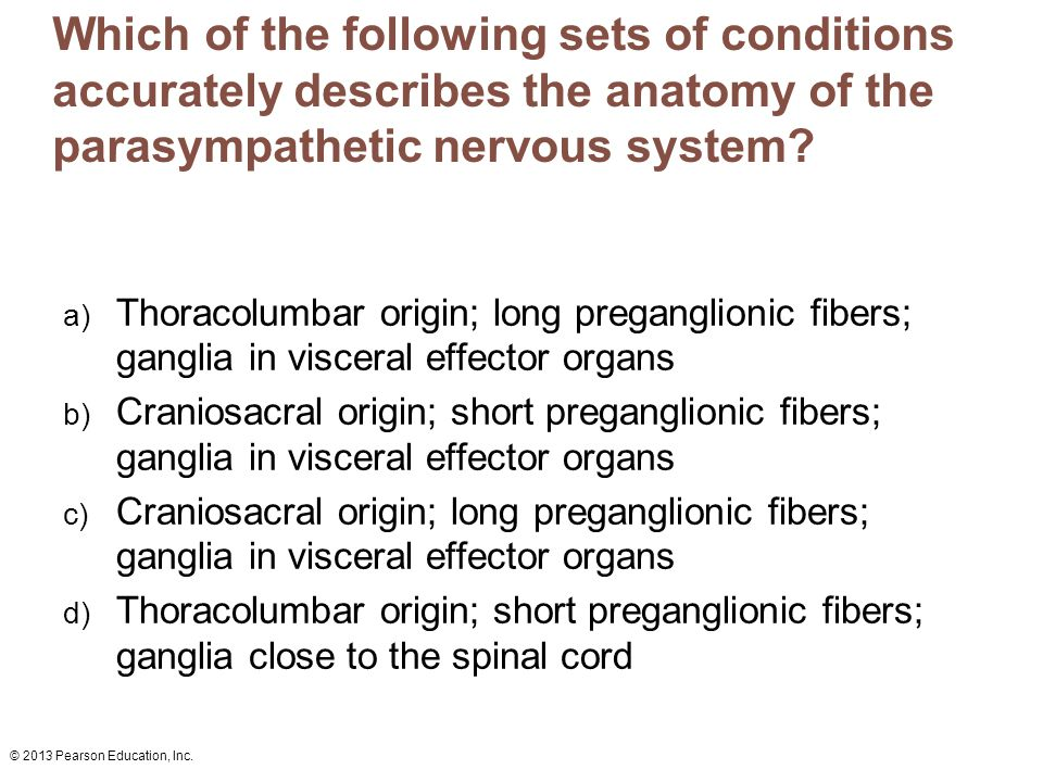 © 2013 Pearson Education, Inc. Which of the following sets of conditions accurately describes the anatomy of the parasympathetic nervous system? a) Th