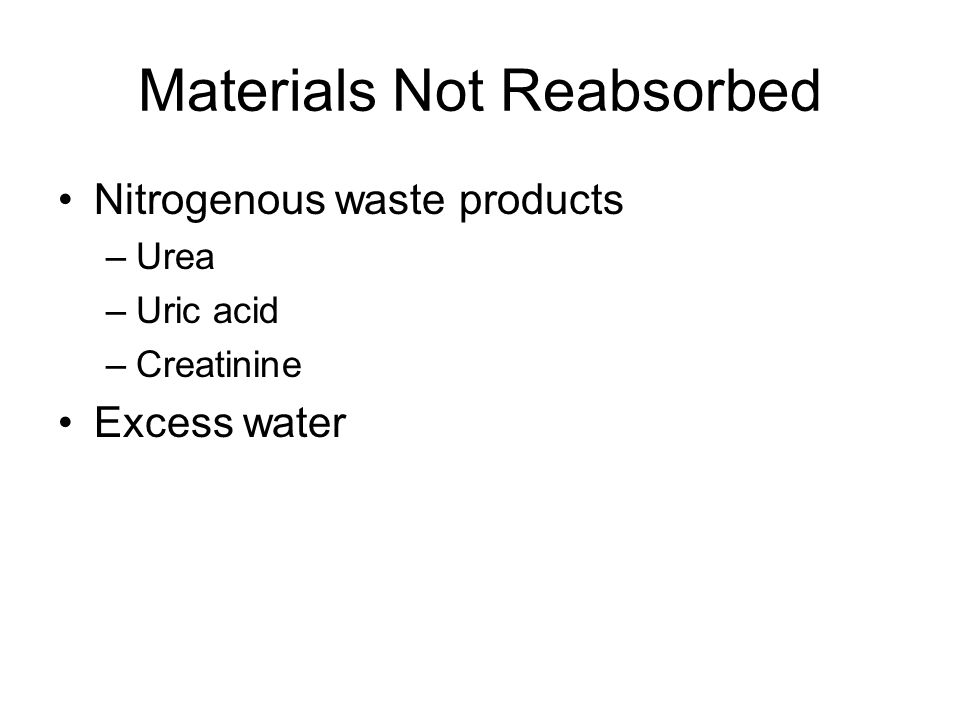 Materials Not Reabsorbed Nitrogenous waste products –Urea –Uric acid –Creatinine Excess water