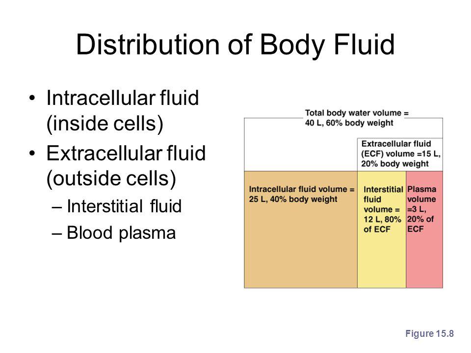 Distribution of Body Fluid Intracellular fluid (inside cells) Extracellular fluid (outside cells) –Interstitial fluid –Blood plasma Figure 15.8