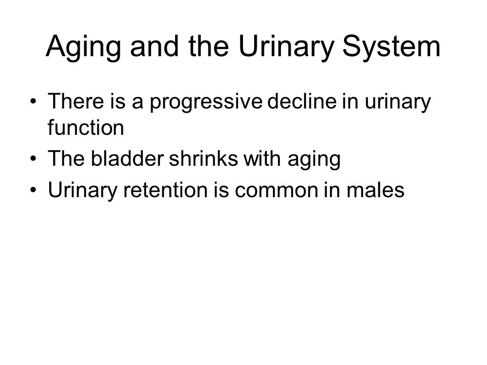 Aging and the Urinary System There is a progressive decline in urinary function The bladder shrinks with aging Urinary retention is common in males