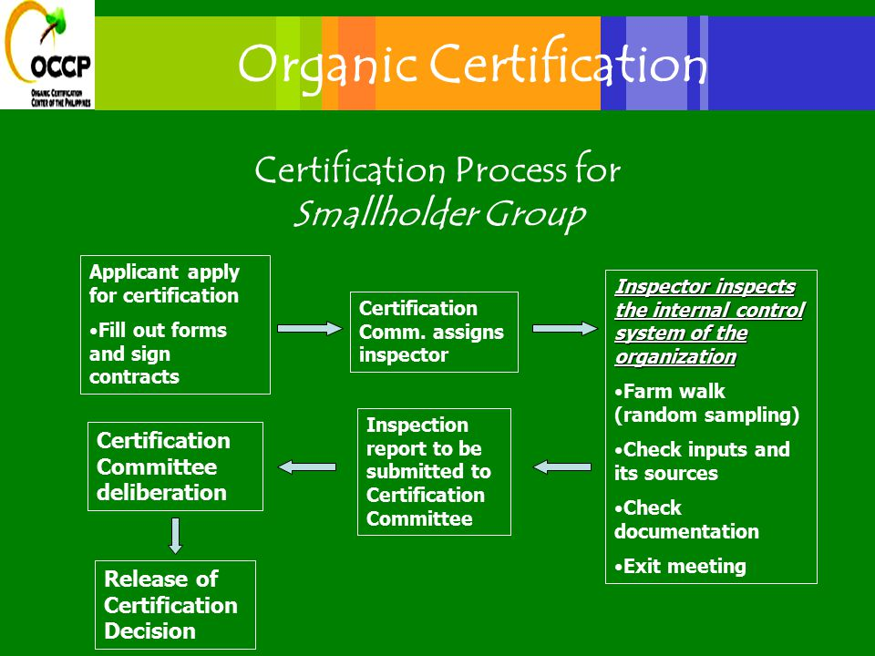 Certification Process for Smallholder Group Applicant apply for certification Fill out forms and sign contracts Certification Comm.