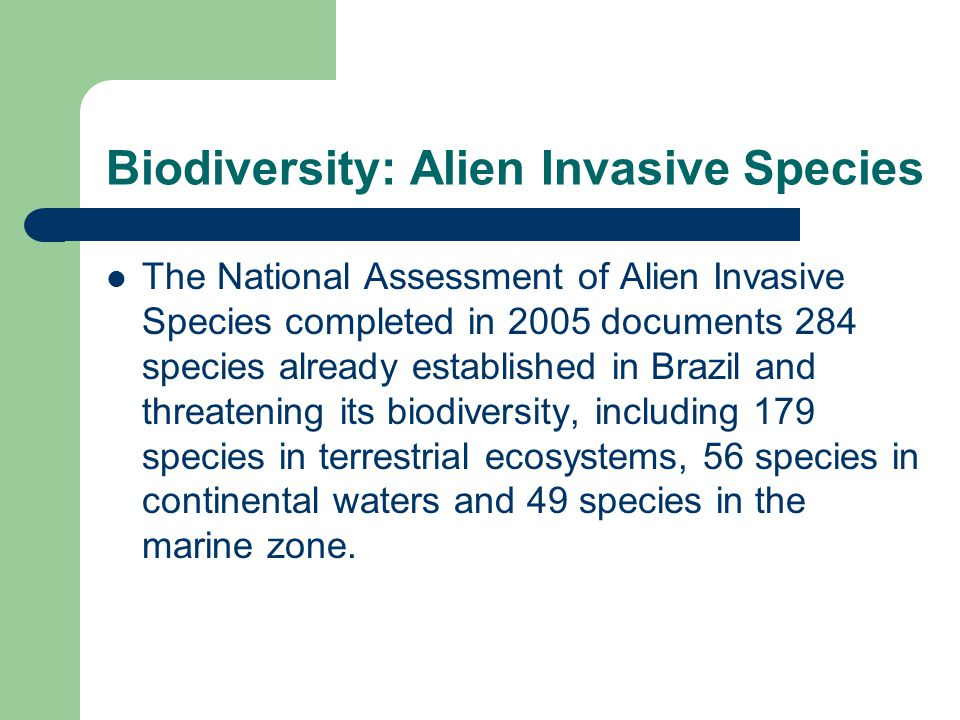Biodiversity: Alien Invasive Species The National Assessment of Alien Invasive Species completed in 2005 documents 284 species already established in Brazil and threatening its biodiversity, including 179 species in terrestrial ecosystems, 56 species in continental waters and 49 species in the marine zone.