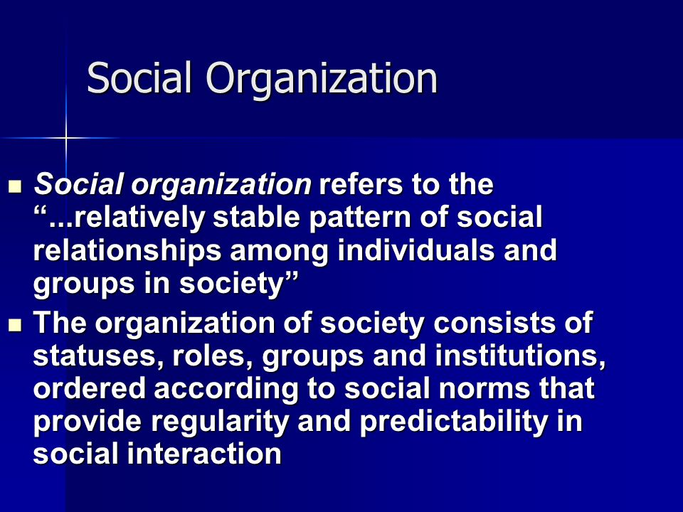 "Social Organization Social organization refers to the ""...relatively stable pattern of social relationships among individuals and groups in society"" S"