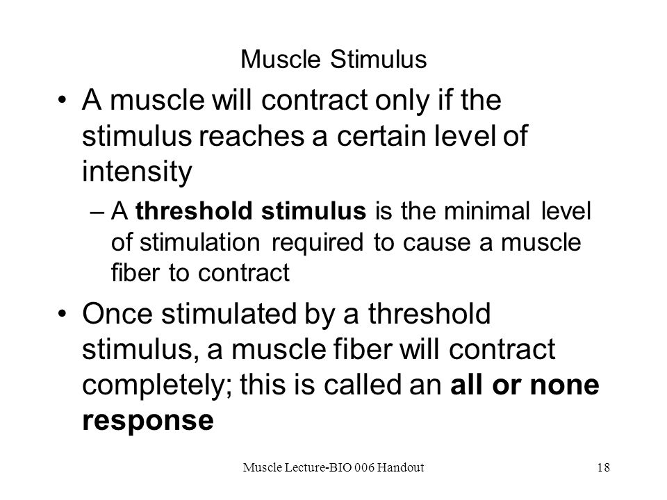 Muscle Lecture-BIO 006 Handout18 Muscle Stimulus A muscle will contract only if the stimulus reaches a certain level of intensity –A threshold stimulus is the minimal level of stimulation required to cause a muscle fiber to contract Once stimulated by a threshold stimulus, a muscle fiber will contract completely; this is called an all or none response