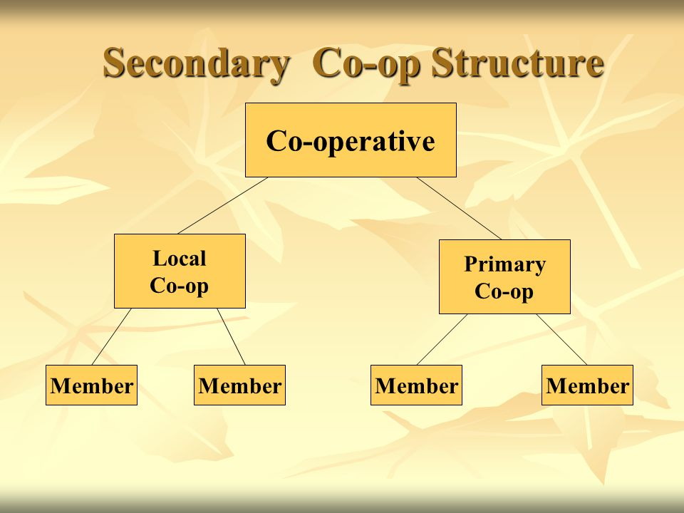 Secondary Co-op Structure Secondary Co-op Structure Co-operative Primary Co-op Member Local Co-op Member
