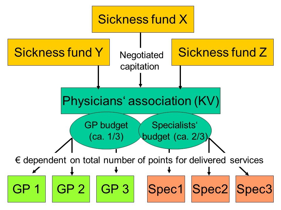 Sickness fund X Physicians' association (KV) GP 1 Negotiated capitation Sickness fund Y Sickness fund Z GP budget (ca.
