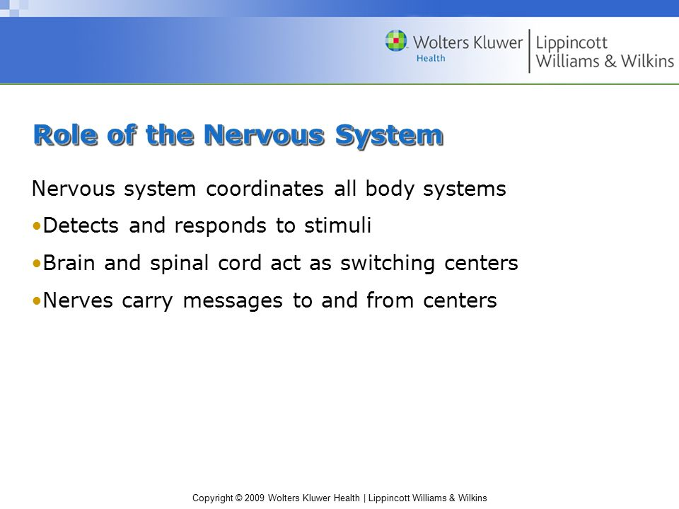 Copyright © 2009 Wolters Kluwer Health | Lippincott Williams & Wilkins Role of the Nervous System Nervous system coordinates all body systems Detects and responds to stimuli Brain and spinal cord act as switching centers Nerves carry messages to and from centers