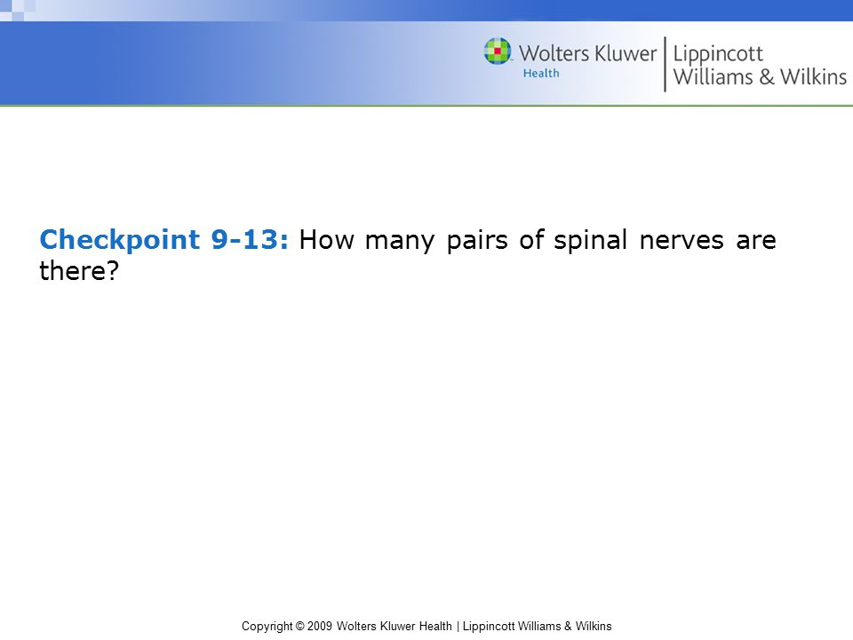 Copyright © 2009 Wolters Kluwer Health | Lippincott Williams & Wilkins Checkpoint 9-13: How many pairs of spinal nerves are there?
