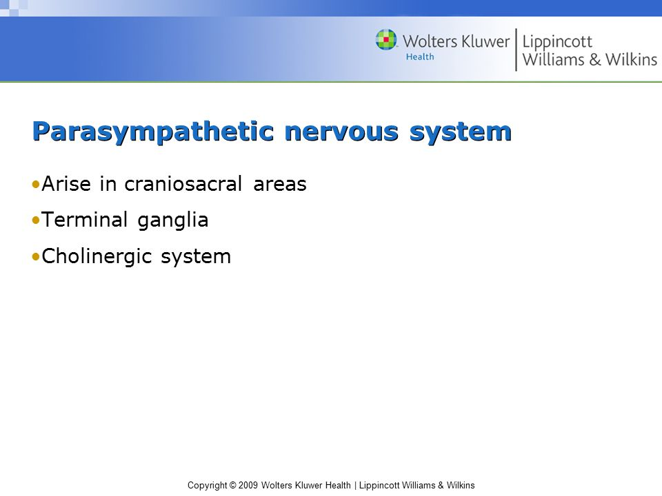 Copyright © 2009 Wolters Kluwer Health | Lippincott Williams & Wilkins Parasympathetic nervous system Arise in craniosacral areas Terminal ganglia Cholinergic system