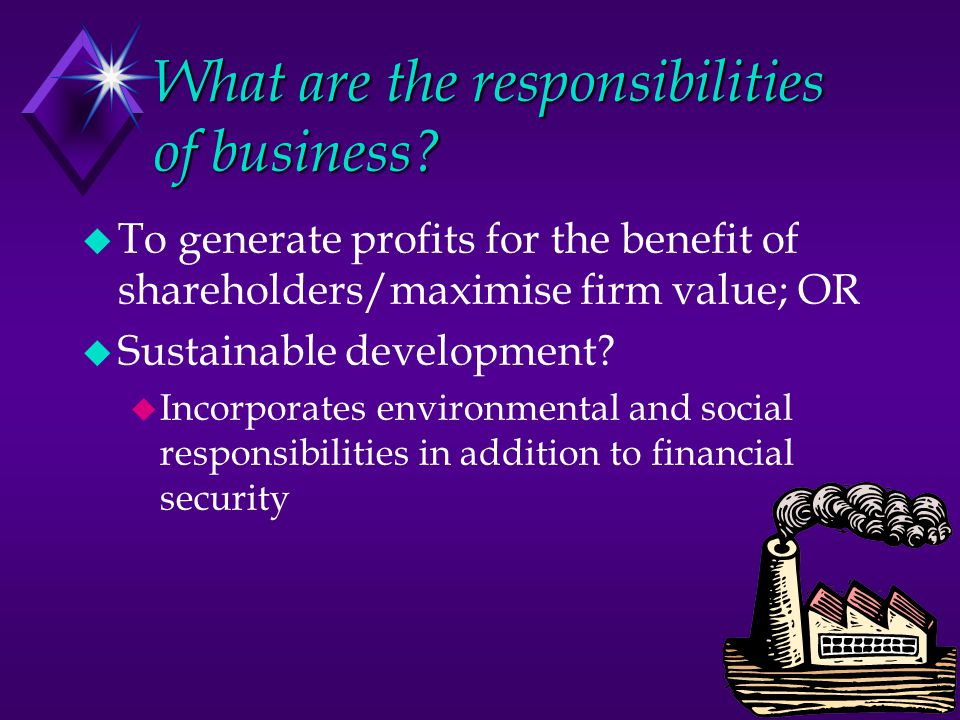 What are the responsibilities of business.