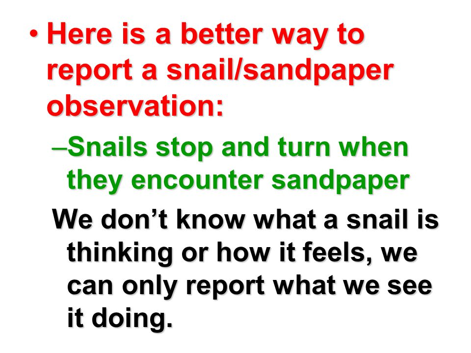 Here is a better way to report a snail/sandpaper observation:Here is a better way to report a snail/sandpaper observation: –Snails stop and turn when