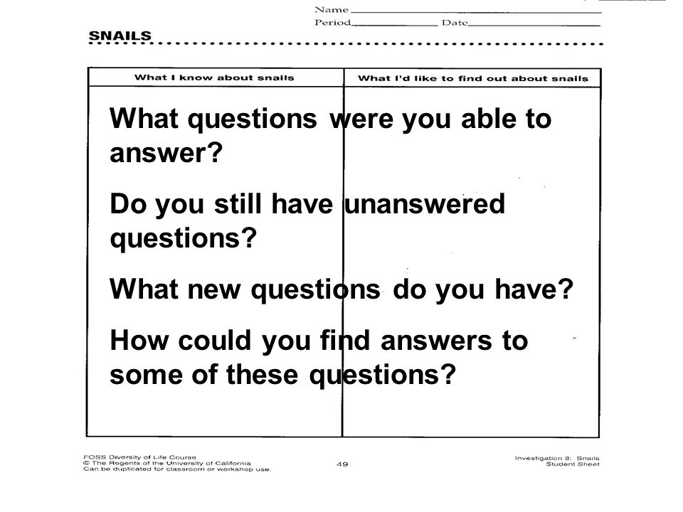 What questions were you able to answer. Do you still have unanswered questions.