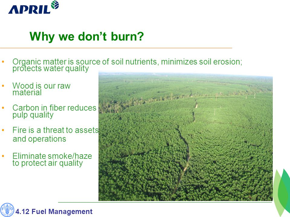 Organic matter is source of soil nutrients, minimizes soil erosion; protects water quality Wood is our raw material Carbon in fiber reduces pulp quality Fire is a threat to assets and operations Eliminate smoke/haze to protect air quality Why we don't burn.