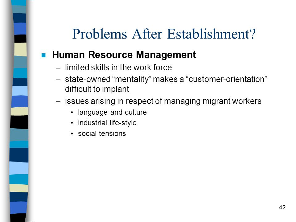 """42 Problems After Establishment? n Human Resource Management –limited skills in the work force –state-owned """"mentality"""" makes a """"customer-orientation"""""""
