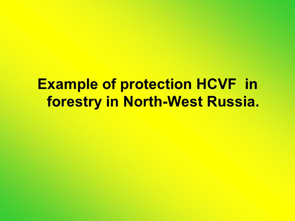 Example of protection HCVF in forestry in North-West Russia.