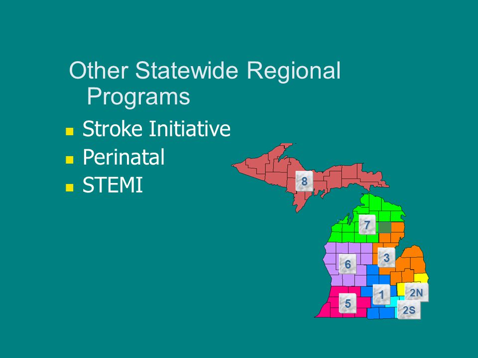 Other Statewide Regional Programs Stroke Initiative Perinatal STEMI 8 7 6 5 1 3 2N 2S