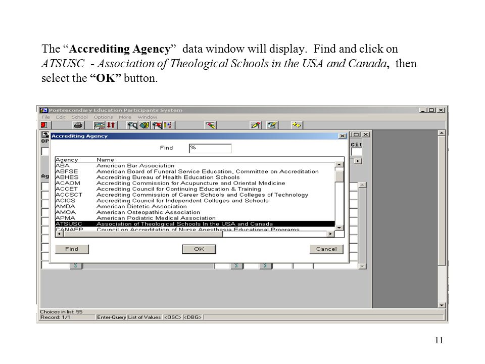 11 The Accrediting Agency data window will display.