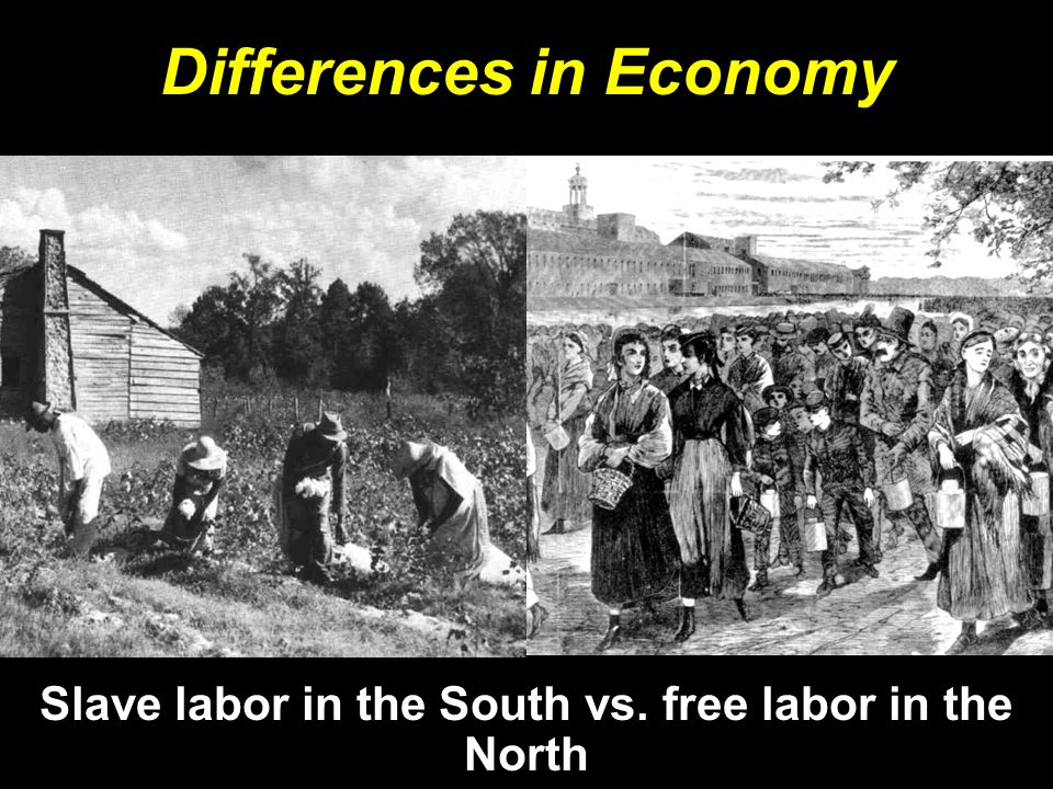 Differences in Economy Slave labor in the South vs. free labor in the North