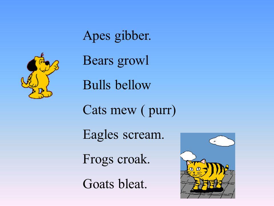 Apes gibber. Bears growl Bulls bellow Cats mew ( purr) Eagles scream. Frogs croak. Goats bleat.