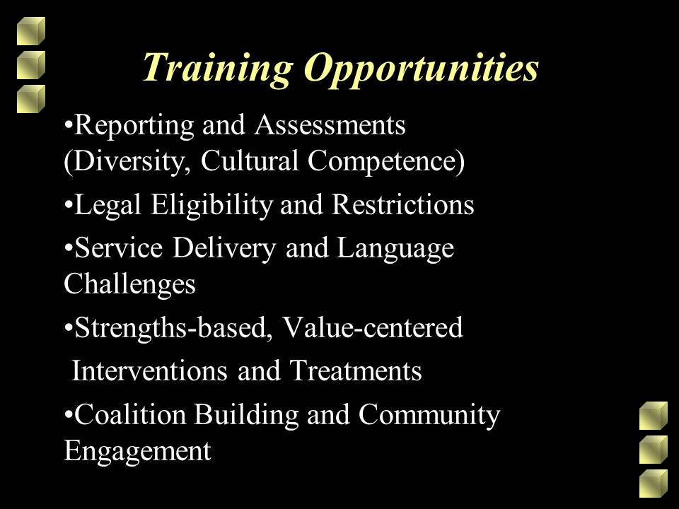Training Opportunities Reporting and Assessments (Diversity, Cultural Competence) Legal Eligibility and Restrictions Service Delivery and Language Challenges Strengths-based, Value-centered Interventions and Treatments Coalition Building and Community Engagement