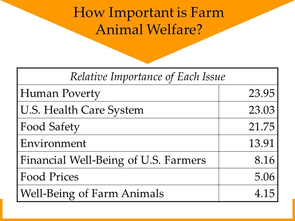 What Makes Animals Happy.