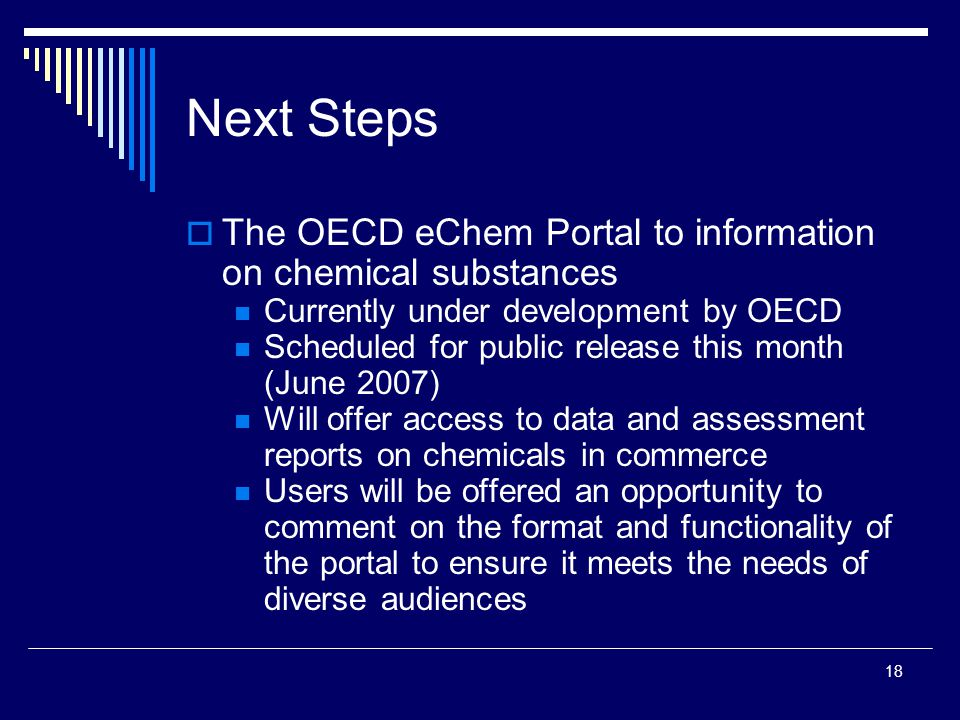 18 Next Steps  The OECD eChem Portal to information on chemical substances Currently under development by OECD Scheduled for public release this mont