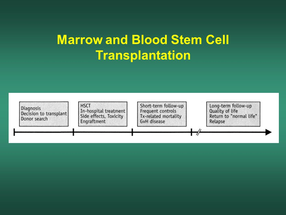 Marrow and Blood Stem Cell Transplantation