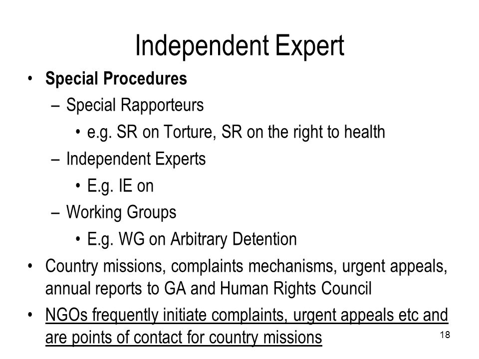 Independent Expert Special Procedures –Special Rapporteurs e.g. SR on Torture, SR on the right to health –Independent Experts E.g. IE on –Working Grou