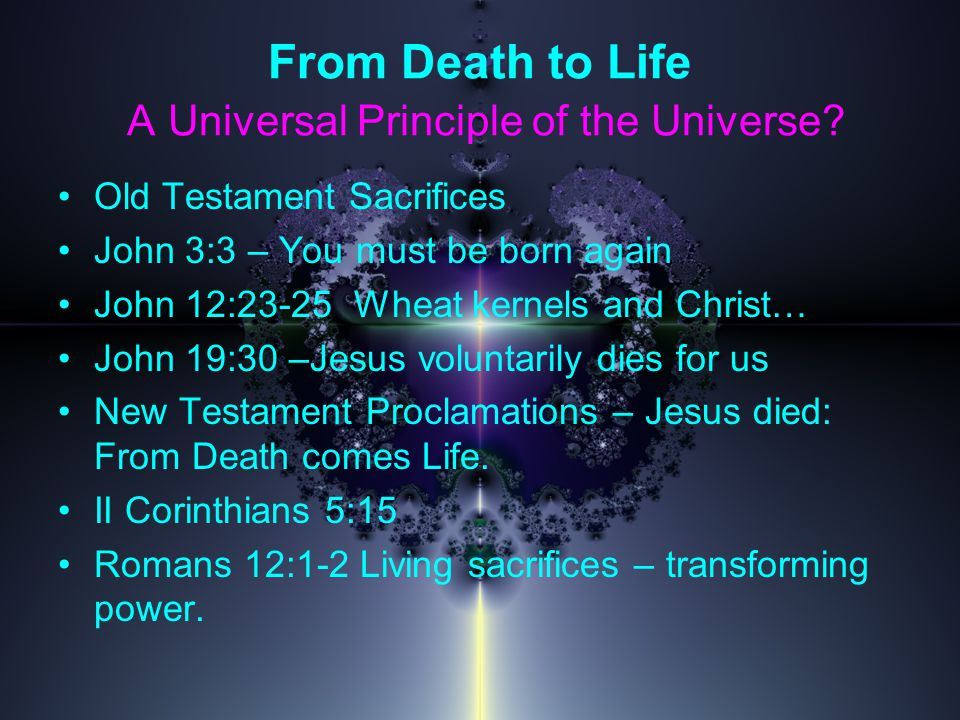 From Death to Life A Universal Principle of the Universe.
