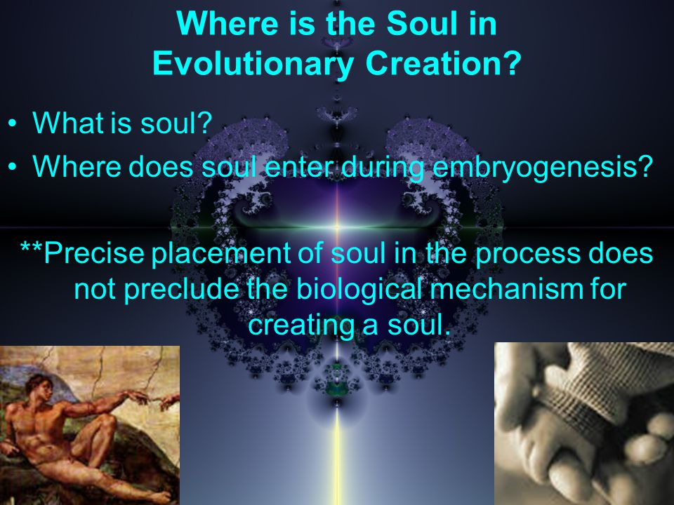 Where is the Soul in Evolutionary Creation. What is soul.