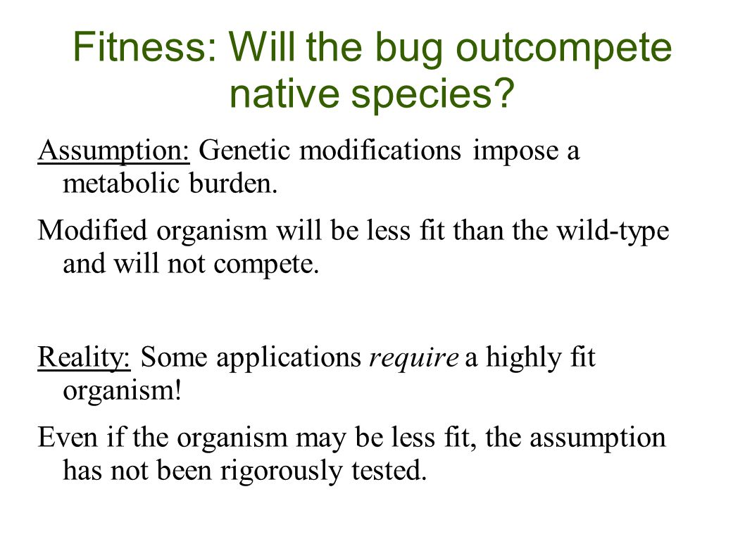 Fitness: Will the bug outcompete native species.