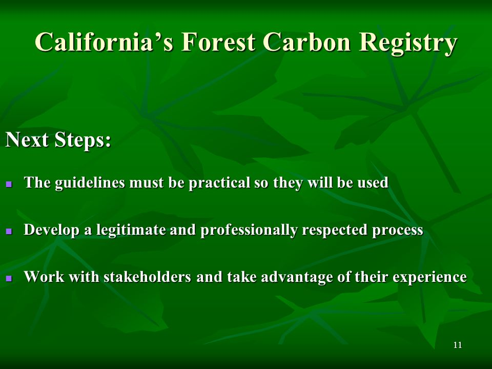 11 California's Forest Carbon Registry Next Steps: The guidelines must be practical so they will be used The guidelines must be practical so they will be used Develop a legitimate and professionally respected process Develop a legitimate and professionally respected process Work with stakeholders and take advantage of their experience Work with stakeholders and take advantage of their experience