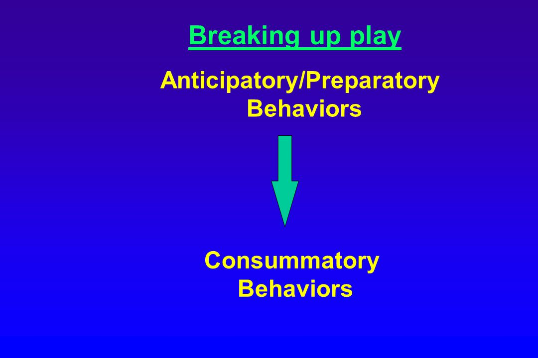 Breaking up play Anticipatory/Preparatory Behaviors Consummatory Behaviors
