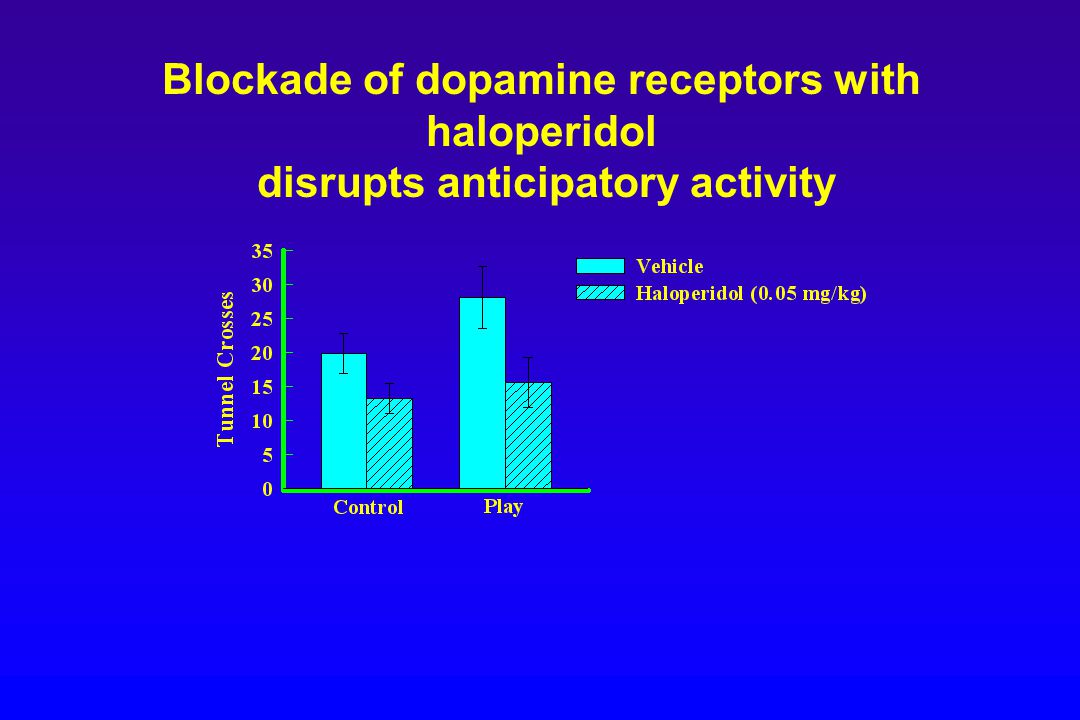 Blockade of dopamine receptors with haloperidol disrupts anticipatory activity