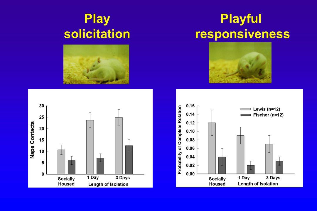 Play solicitation Playful responsiveness