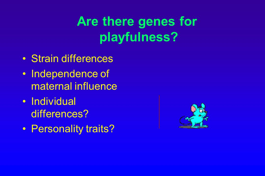Are there genes for playfulness.