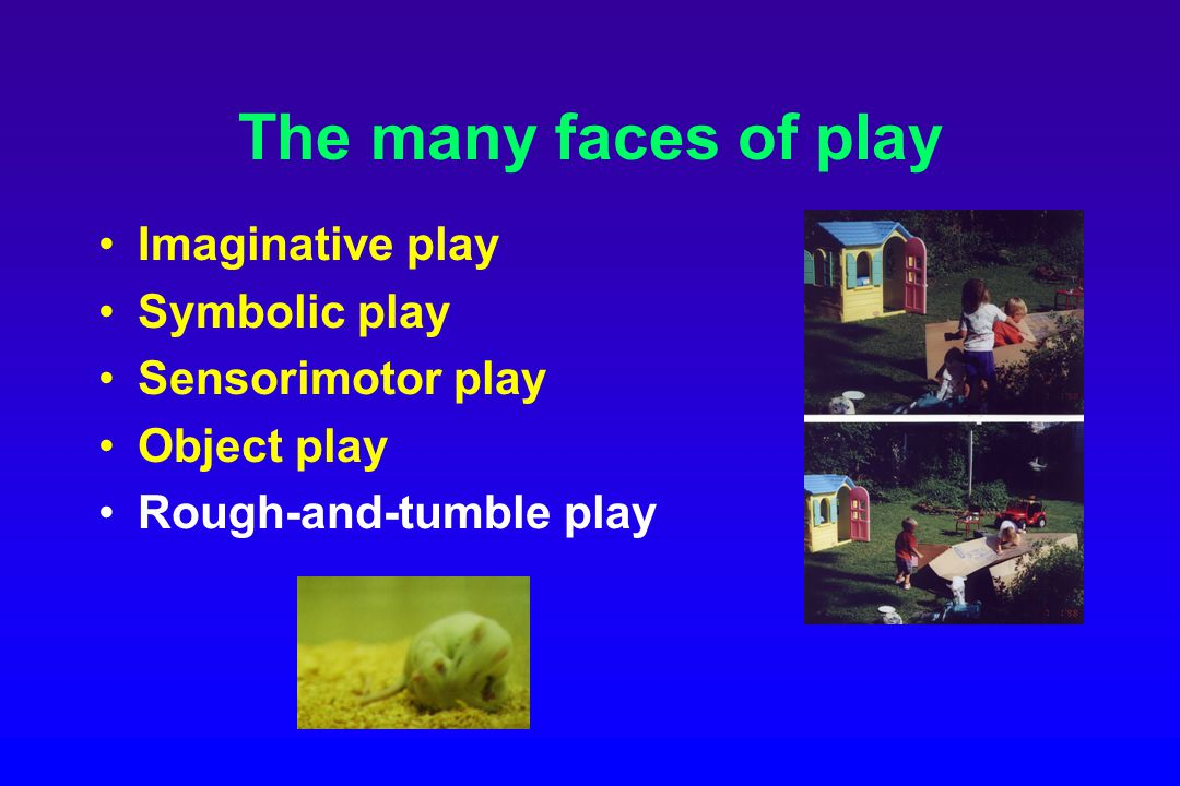 The many faces of play Imaginative play Symbolic play Sensorimotor play Object play Rough-and-tumble play