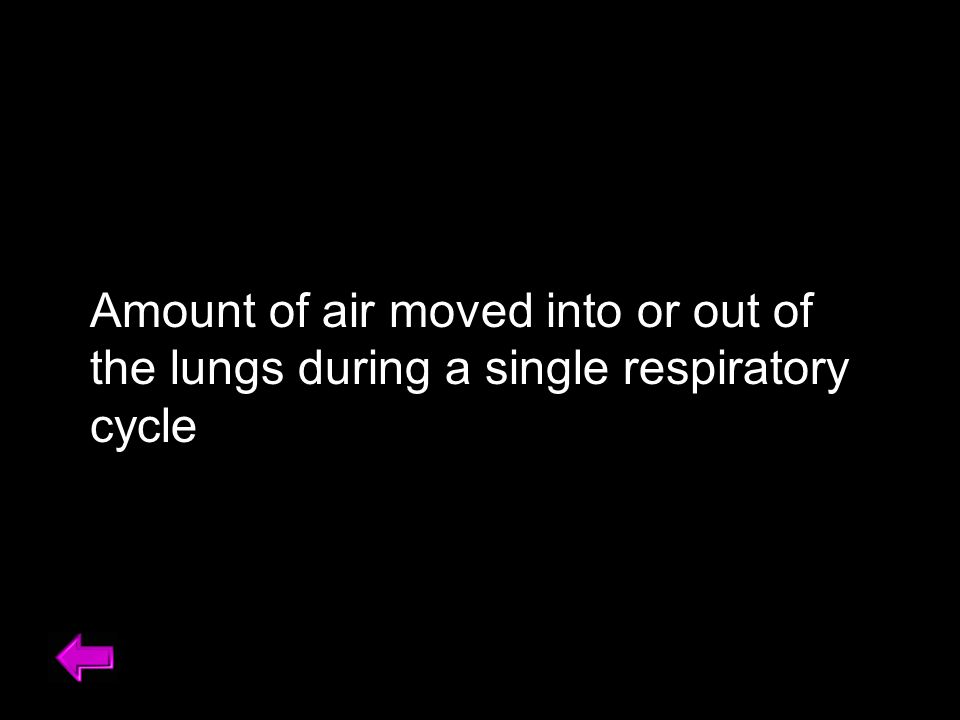 Amount of air moved into or out of the lungs during a single respiratory cycle