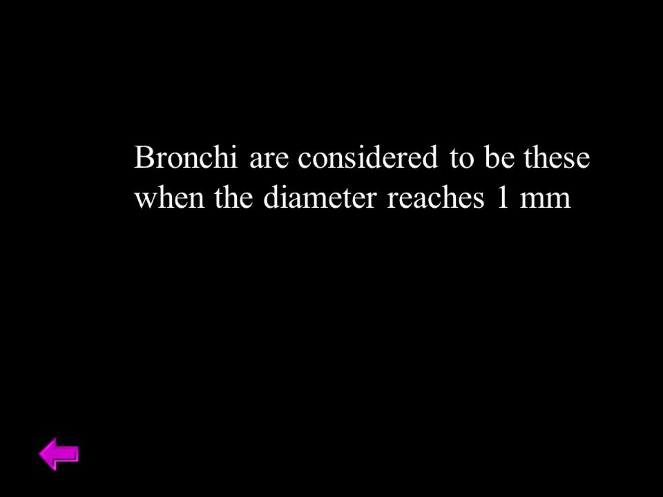 Bronchi are considered to be these when the diameter reaches 1 mm