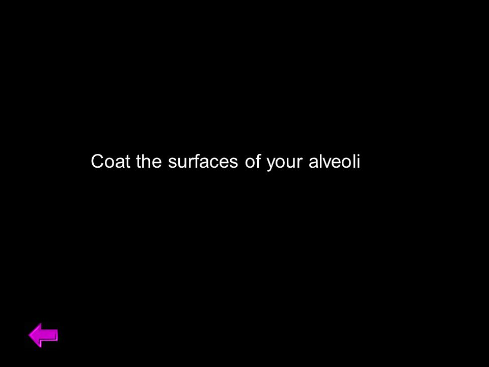 Coat the surfaces of your alveoli