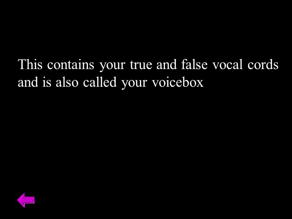 This contains your true and false vocal cords and is also called your voicebox