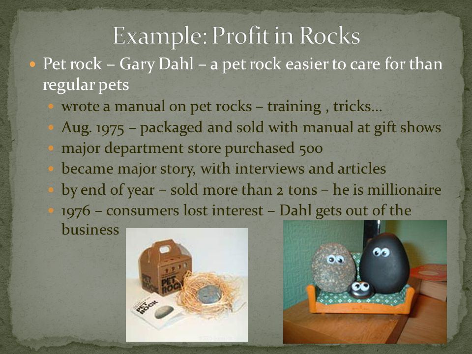 Books different then pet rocks – fierce competition before 1995 – small chain stores and neighborhood booksellers dominate market 1995 – large chain stores – Barnes & Noble Inc.