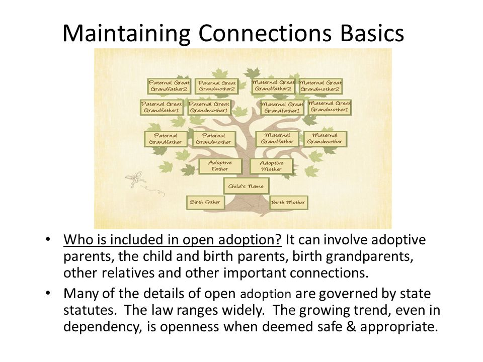 Maintaining Connections Basics Who is included in open adoption.