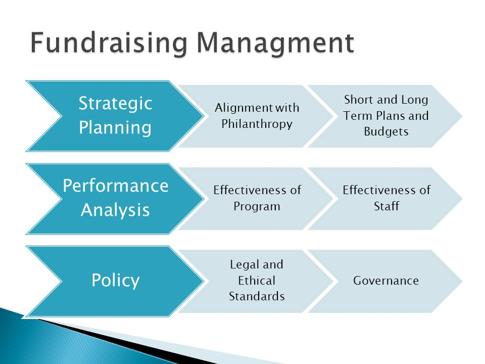 Strategic Planning Alignment with Philanthropy Short and Long Term Plans and Budgets Performance Analysis Effectiveness of Program Effectiveness of Staff Policy Legal and Ethical Standards Governance